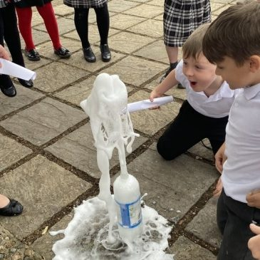Klimt Class Friday Treat – Science Learning Experience